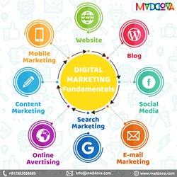Top Digital Marketing Agency services Delhi India – Maddova